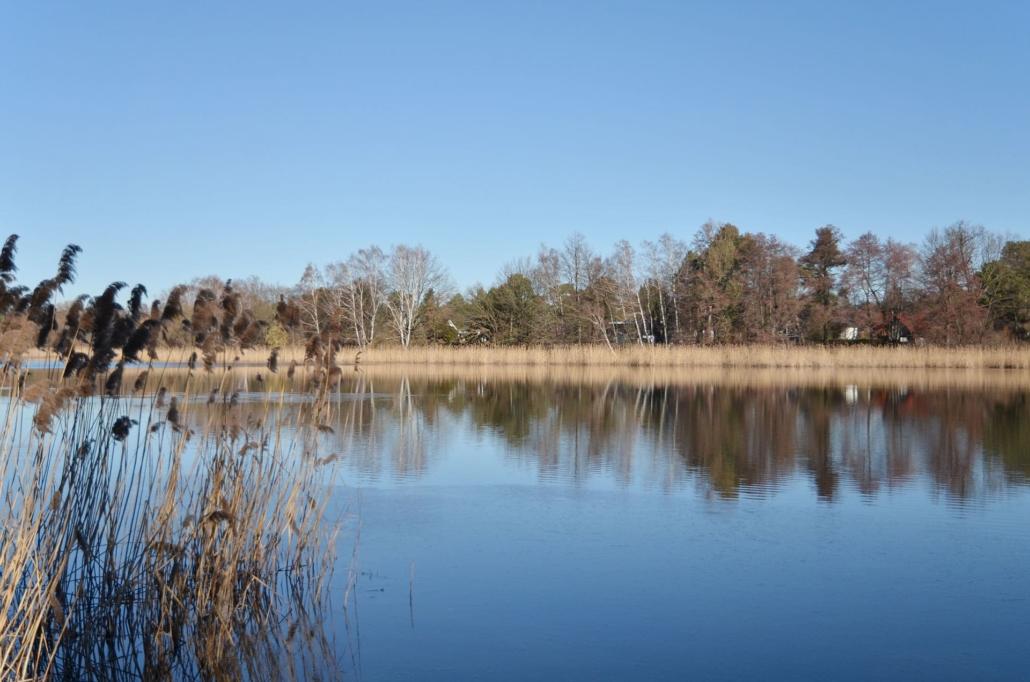 Der Falkenhagener See ist fußläufig erreichbar und lädt zu einem erholsamen und entspannten Spaziergang ein